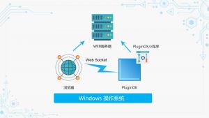 PluginOK浏览器中间件介绍